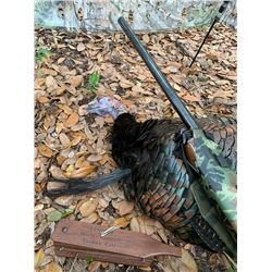 2-day Florida Osceloa Turkey Hunt for One Hunter