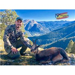 5-day Spain Pyrenean Chamois Hunt for One Hunter and One Non-Hunter
