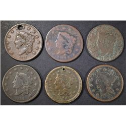 LOT OF 6 MIXED DATE LARGE CENTS