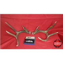 """Pair of Antler Sheds & Collector Knife """"Wolf"""" Motif"""