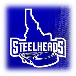 Idaho Steelheads Private Hockey Suite 2020-2021 - Value $2000