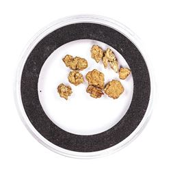Lot of Gold Nuggets 2.82 Grams Gold Weight