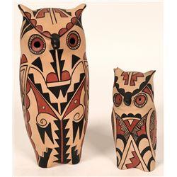 Two Jemez Owls  (121014)
