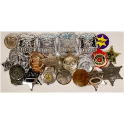 Toy Badges Collection  (119324)