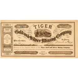 Tiger Gold & Silver Mining Company Stock Certificate  (113534)
