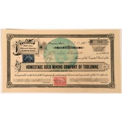 Homestake Gold Mining Co of Tuolumne Stock Certificate, 1898  (118424)