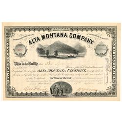 Alta Montana Co. Stock  (109538)