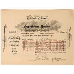 Oppenheimer Institute Stock Certificate, New York, 1904  (118449)