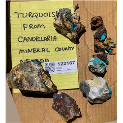 Turquoise from Candelaria  (122167)