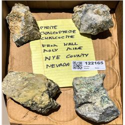 Pyrite and Chalcocite from Hall Moly Mine  (122165)