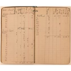 1895 Gold Hill Mine Ledger  (113635)