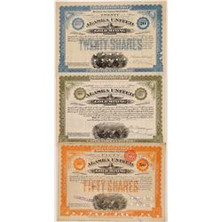 Alaska United Gold Mining Stocks (3)  (108195)