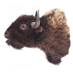 Montana Great American Buffalo Shoulder Mount