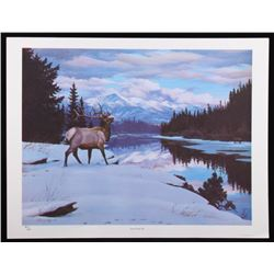 """Swan River Elk"" Limited Edition Print By Sprunger"