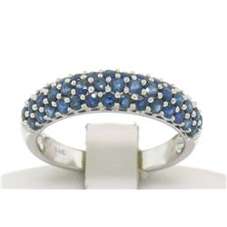 14kt White Gold 1.25 ctw Domed Pave Round Blue Sapphire Band Ring