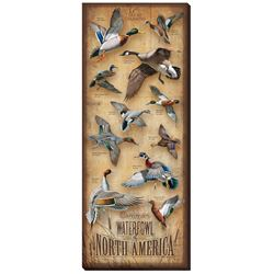 Waterfowl of North America Wrapped Canvas