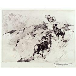 Alarmed by Carl Rungius (1869-1959)