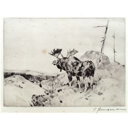 The Answer from the Barren by Carl Rungius (1869-1959)