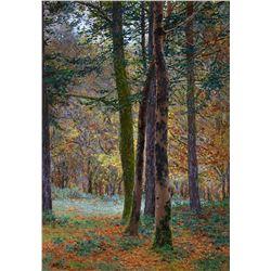 Sunlit Grove by Gunnar Widforss (1879-1934)