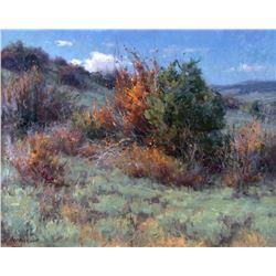 Wyoming Hillside by Clyde Aspevig (1951- )