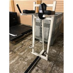 LIFE FITNESS LEG LIFT STATION