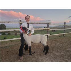 Lily Malesich - Purple Ribbon Market Lamb (Weight: 113)