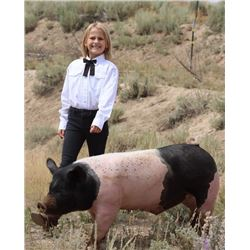 Gwynevere Brown - Blue Ribbon Market Hog (Weight: 244)