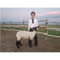 Koen Malesich - Blue Ribbon Market Lamb (Weight: 103)