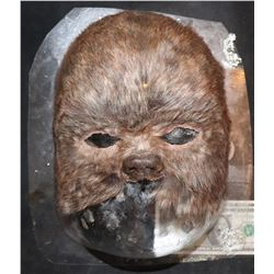 STAR WARS EWOK LIKE FACIAL APPLIANCE