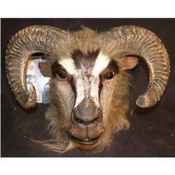 NARNIA SCREEN USED RAM WARRIOR FULL HEAD MASK