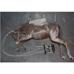 WOLF BUCKING HORSE ROD PUPPET WITH TRIGGERS TO WORK EYES AND MOUTH
