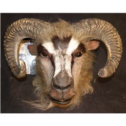 THE CHROCICLES OF NARNIA SCREEN MATCHED RAM WARRIOR FULL HEAD MASK