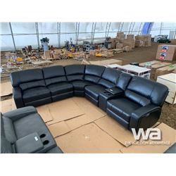 BLACK POWER SECTIONAL