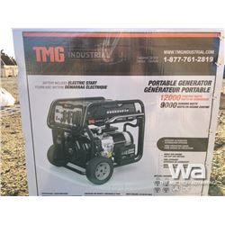 (UNUSED) TMG 12000W GAS ENGINE GENERATOR