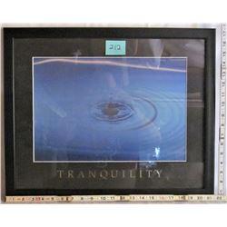 "11""x16"" FRAMED ""TRANQUILITY"" PRINT"