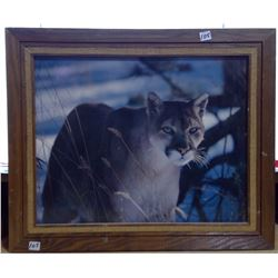 "1975 Framed Photo Enlargement on Panel ""Winter Cougar"""