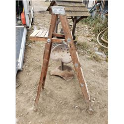 Woodent Stepladder 56""