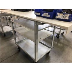 METAL FOUR WHEEL CART WITH LARGE TOP