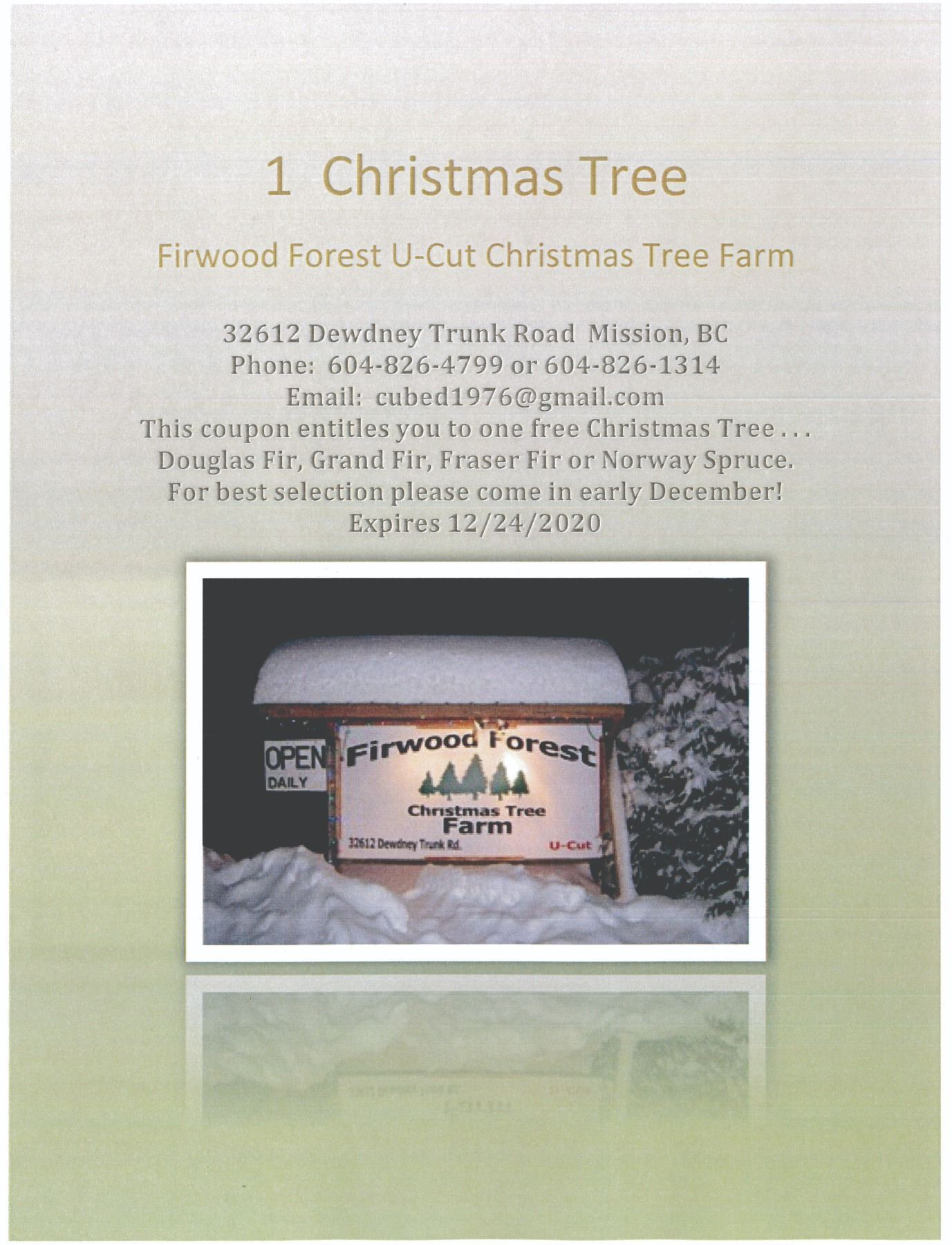 Firwood Forest U-Cut Christmas Tree Farm