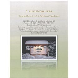 Firwood Forest U-Cut Christmas Tree Farm