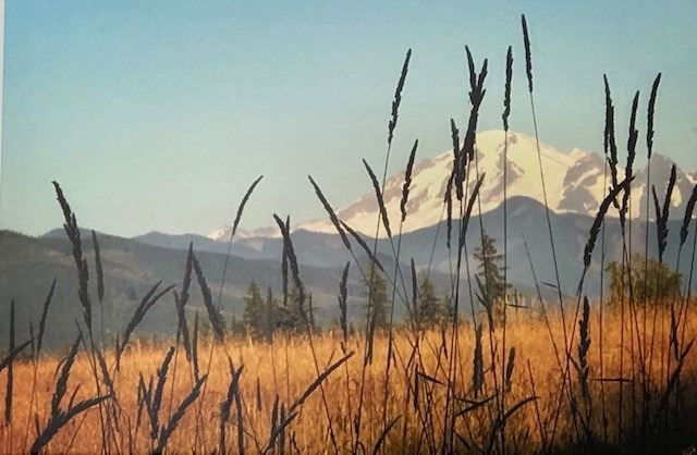 Original Photo Canvas Print of Mt. Baker - Bellingham