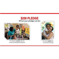 $250 Pledge