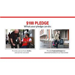 $100 Pledge