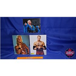 Autographed Photographs in Flushmount Glass Frame (3) : Including Ric Flair; Chris Jericho; etc (Fra