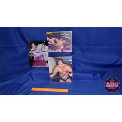 Autographed Photographs in Flushmount Glass Frame (3) : Paul Orndorff; Don Muraco; Abdulah The Butch