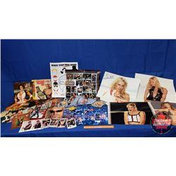 Box Lot : World Wrestling Champion Figures & Wrestling Ephemera including Calendars & Posters