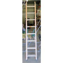 Orange 16-Foot Extension Ladder