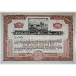 Punta Alegre Sugar Co. Specimen Stock Certificate