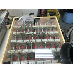ROUTER BIT CONTENTS IN STORAGE CASE (GREEN)