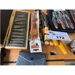 LOT OF CHISELS AND MORE
